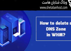 آموزش حذف کردن DNS Zone در WHM