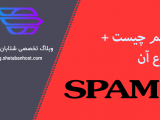 What is spam and its types