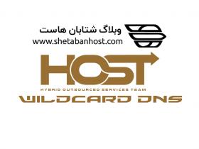 wildcard dns