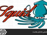 سرور پروکسی Squid