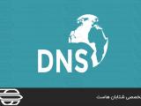نحوه پاک کردن رکورد های DNS در پنل WHM
