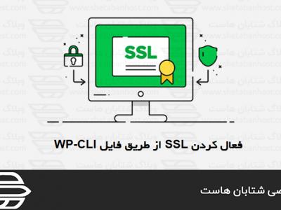 فعال کردن SSL از طریق فایل WP-CLI