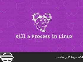 چگونه یک Process یا فرآیند را در لینوکس Kill یا متوقف کنیم؟